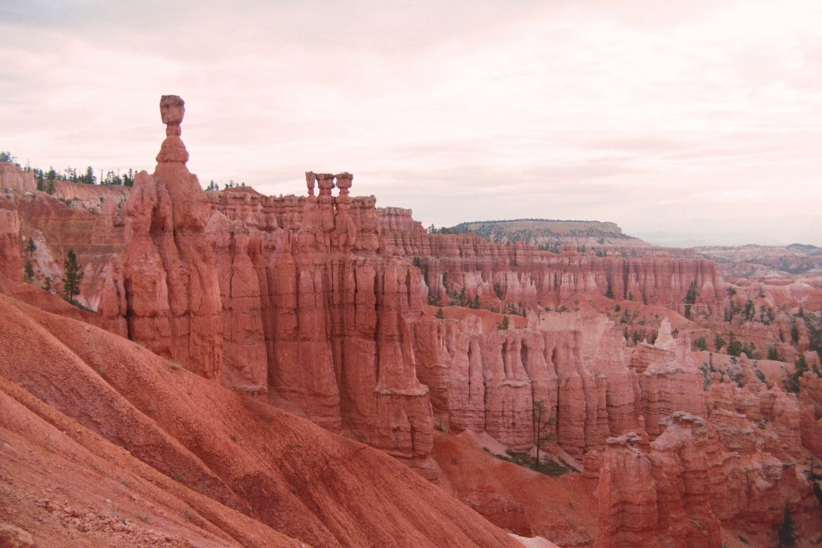 A man and 3 little boys atop the pillars? At Bryce Canyon