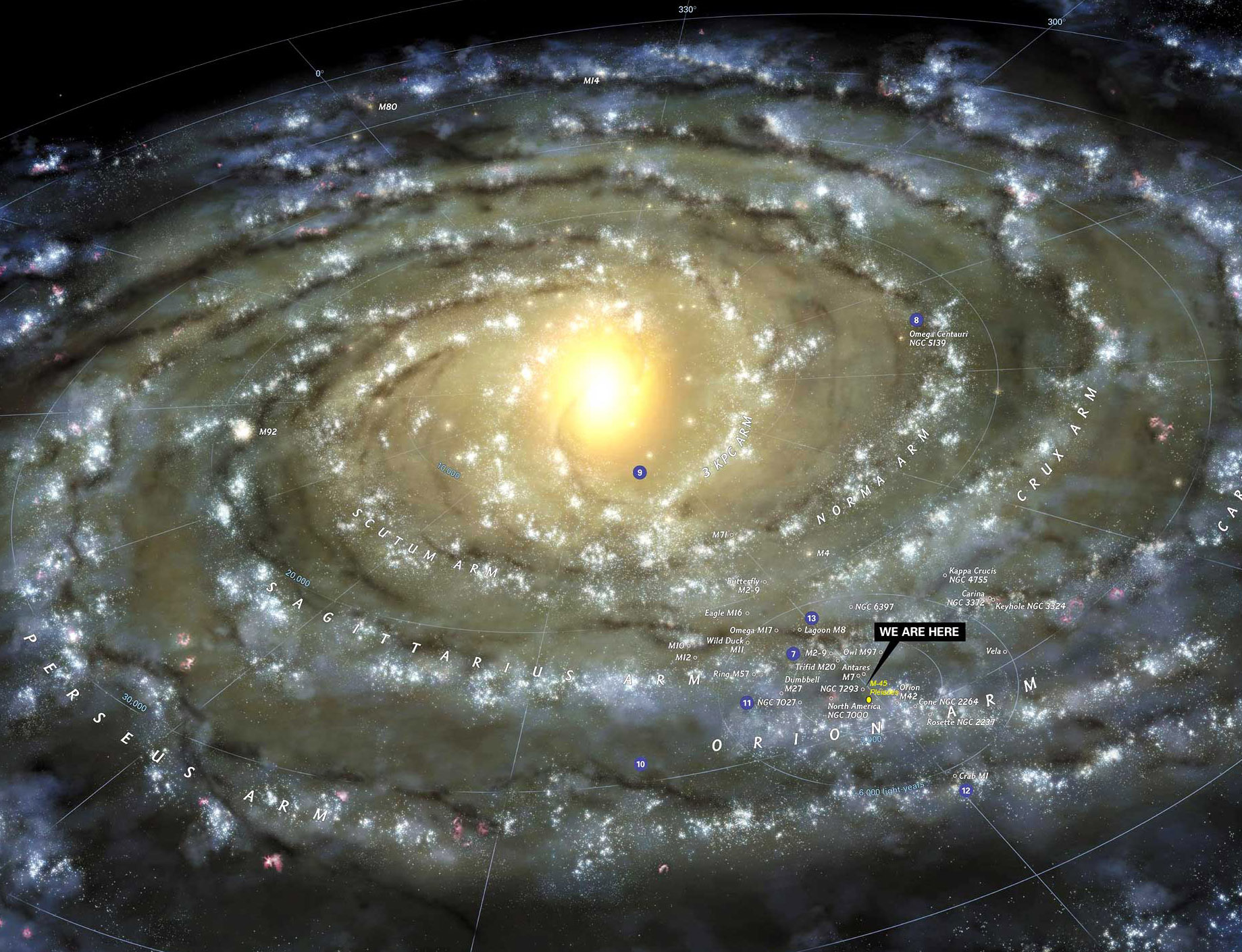 cosmos15_06-crop